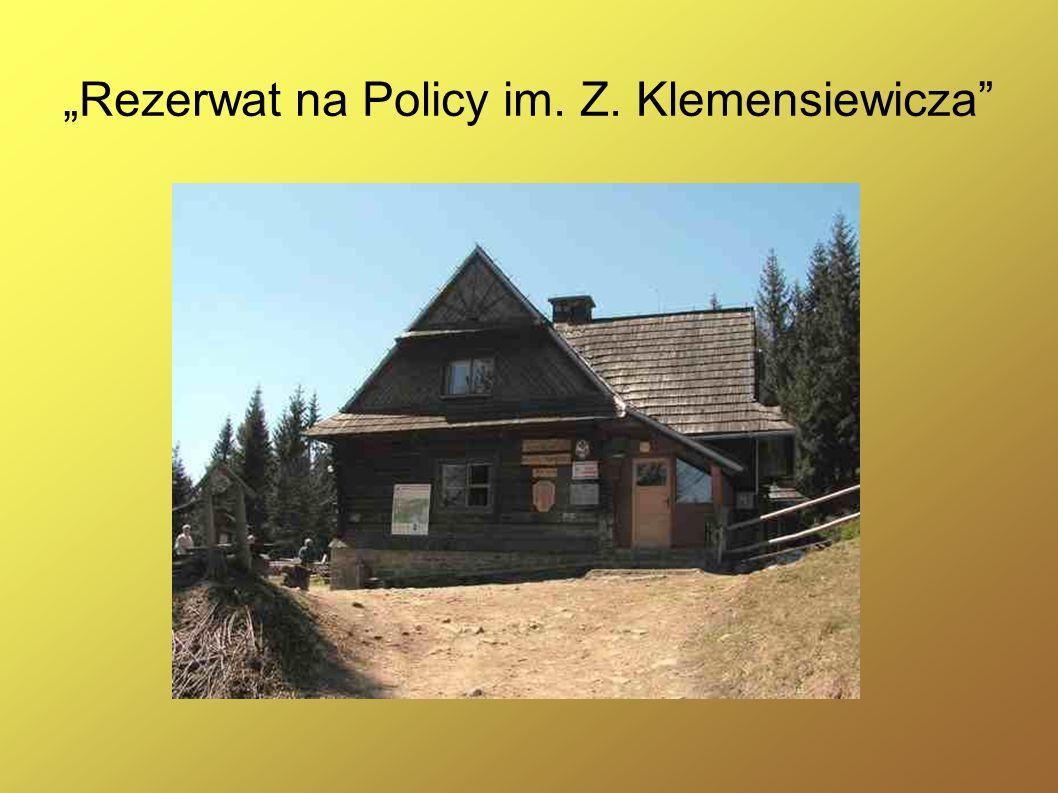 """""""Rezerwat na Policy im. Z. Klemensiewicza"""
