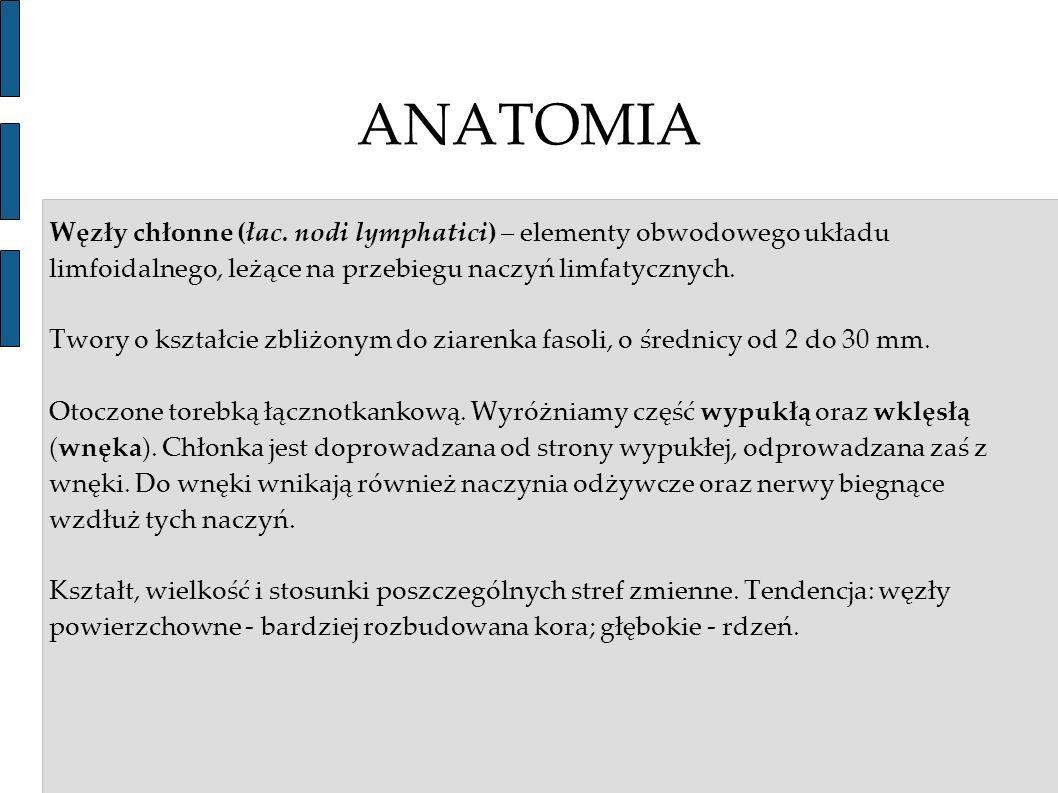 ANATOMIA Węzły chłonne (łac. nodi lymphatici) – elementy obwodowego układu limfoidalnego, leżące na przebiegu naczyń limfatycznych.