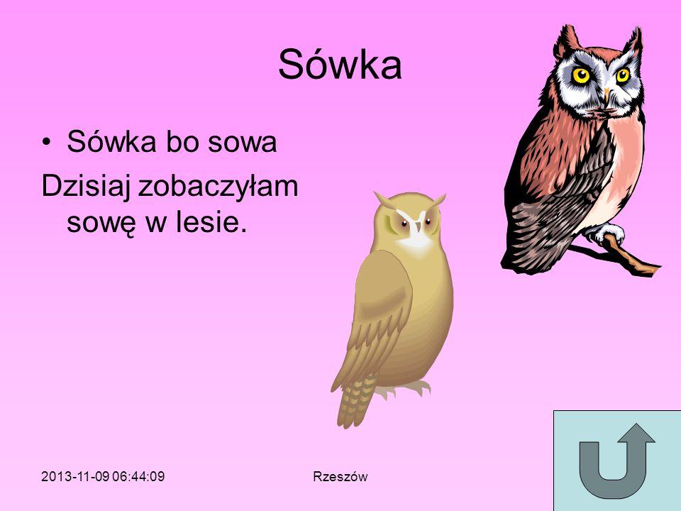 Sówka Sówka bo sowa Dzisiaj zobaczyłam sowę w lesie.
