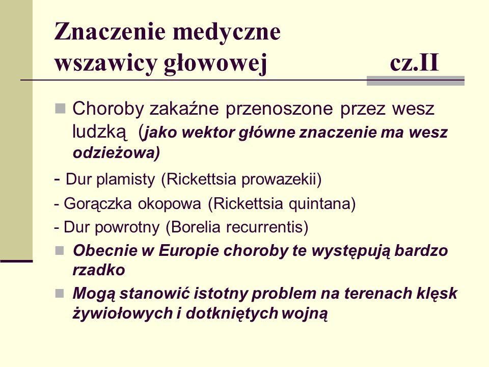 Znaczenie medyczne wszawicy głowowej cz.II