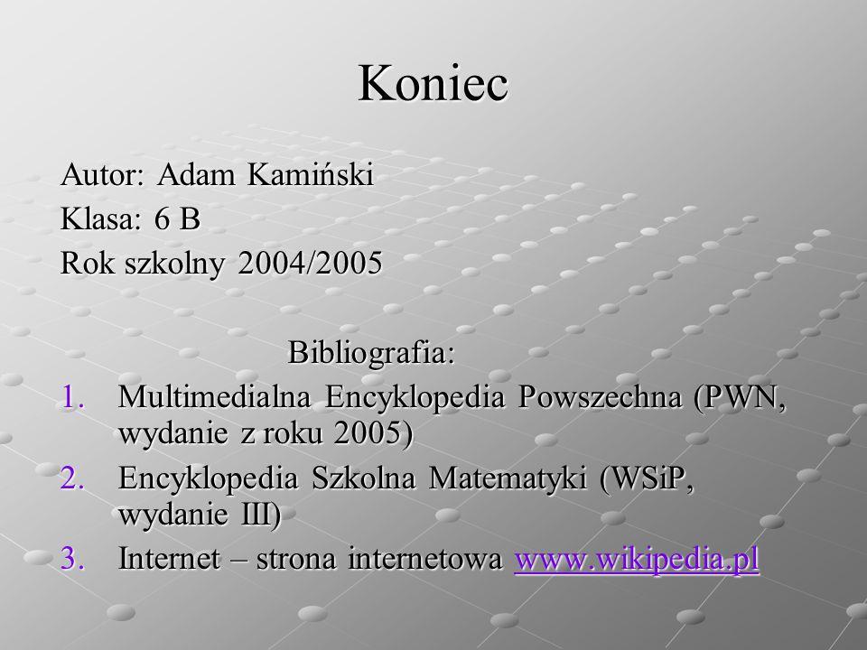 Koniec Autor: Adam Kamiński Klasa: 6 B Rok szkolny 2004/2005