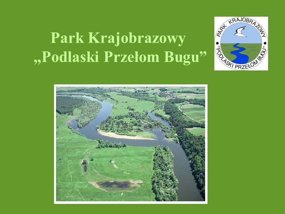 """Park Krajobrazowy """"Podlaski Przełom Bugu"""