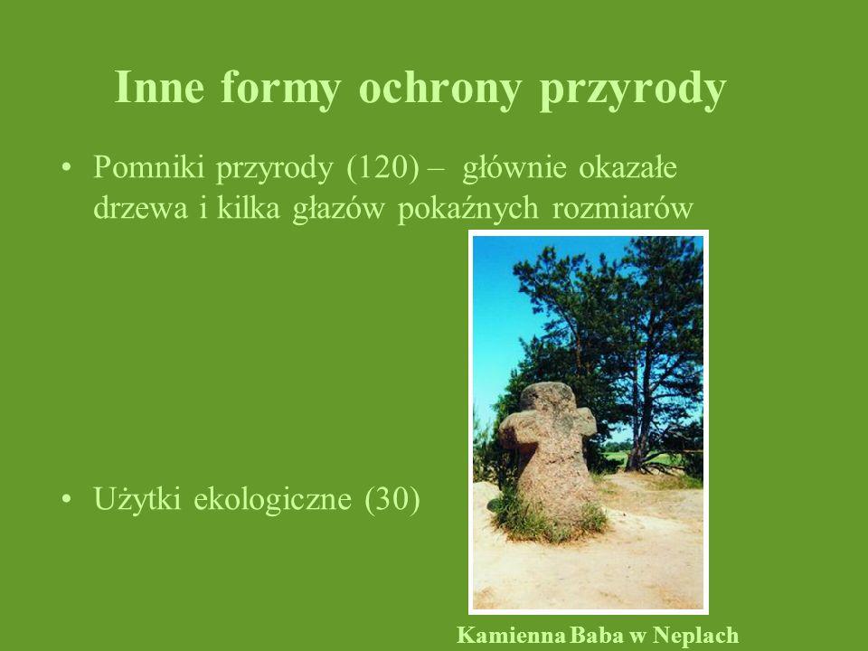 Inne formy ochrony przyrody
