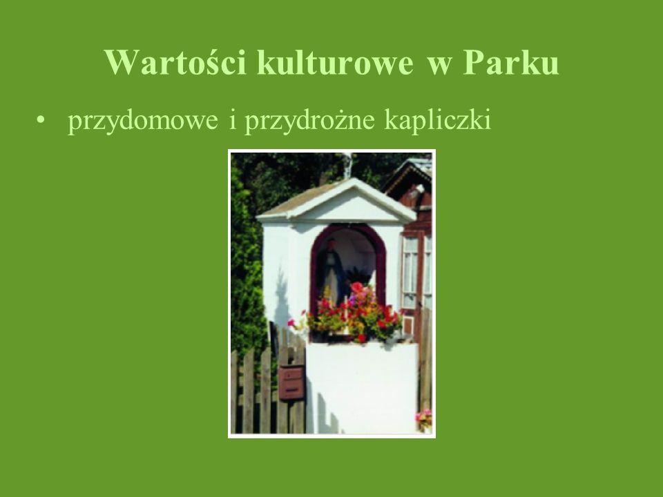 Wartości kulturowe w Parku