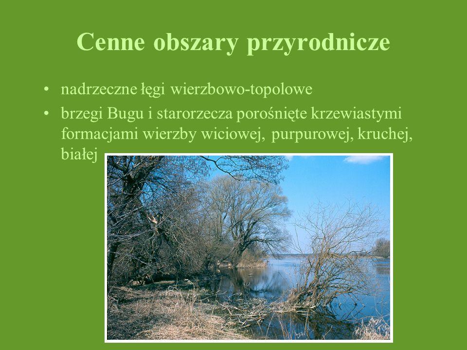 Cenne obszary przyrodnicze