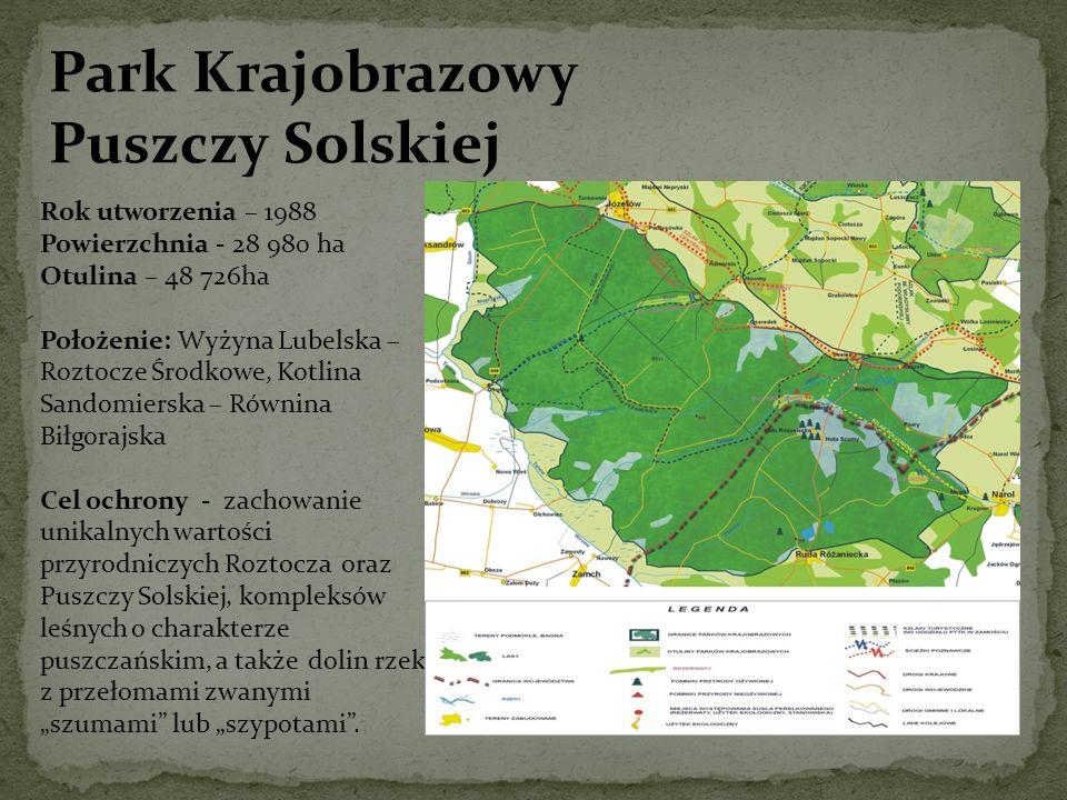 Park Krajobrazowy Puszczy Solskiej Rok utworzenia – 1988