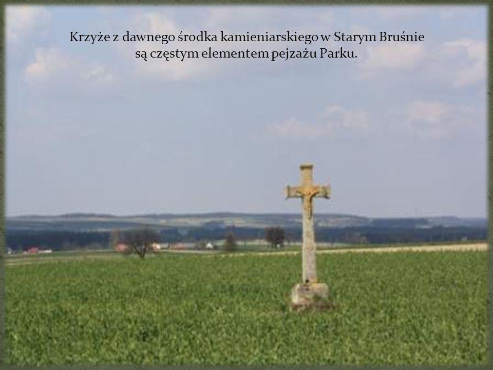 Krzyże z dawnego środka kamieniarskiego w Starym Bruśnie