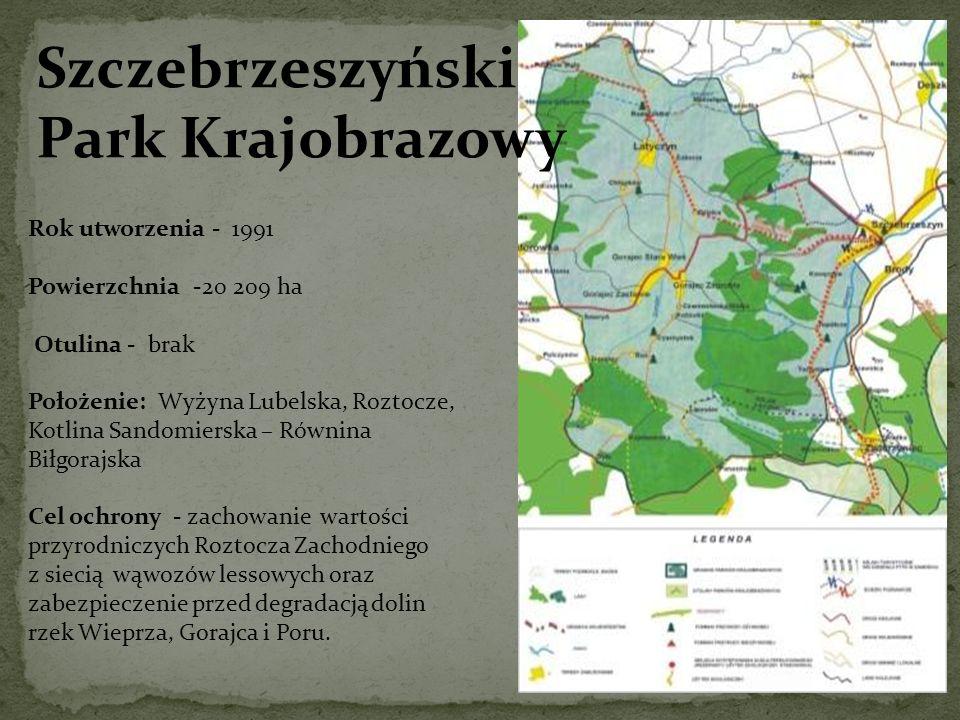 Szczebrzeszyński Park Krajobrazowy Rok utworzenia - 1991