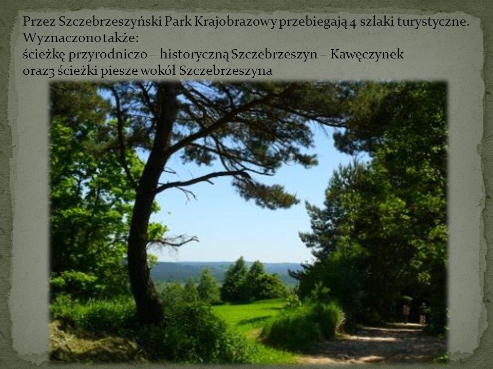 Przez Szczebrzeszyński Park Krajobrazowy przebiegają 4 szlaki turystyczne.