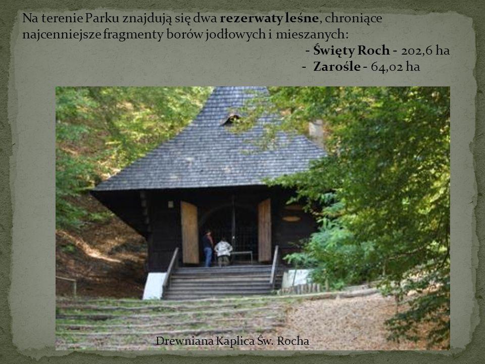 Na terenie Parku znajdują się dwa rezerwaty leśne, chroniące najcenniejsze fragmenty borów jodłowych i mieszanych: