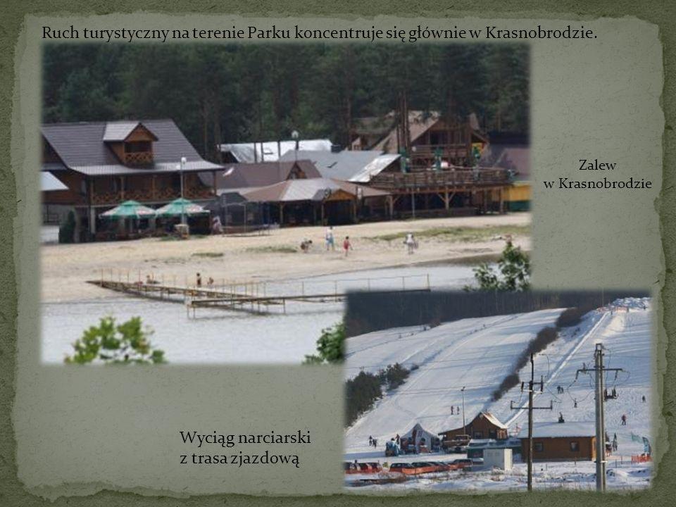 Ruch turystyczny na terenie Parku koncentruje się głównie w Krasnobrodzie.