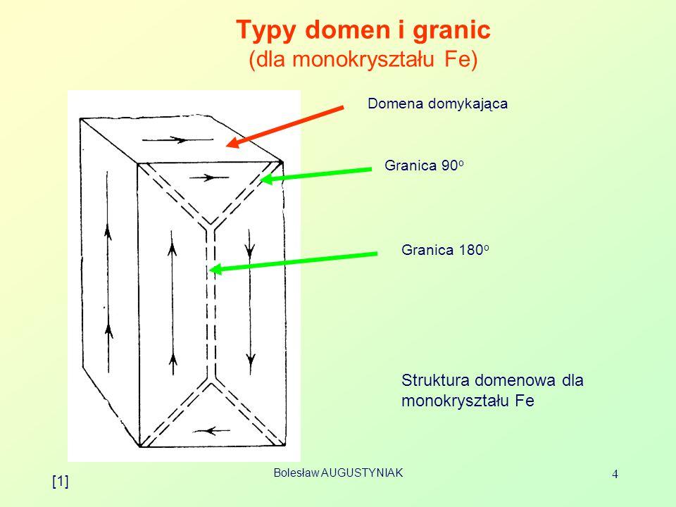 Typy domen i granic (dla monokryształu Fe)