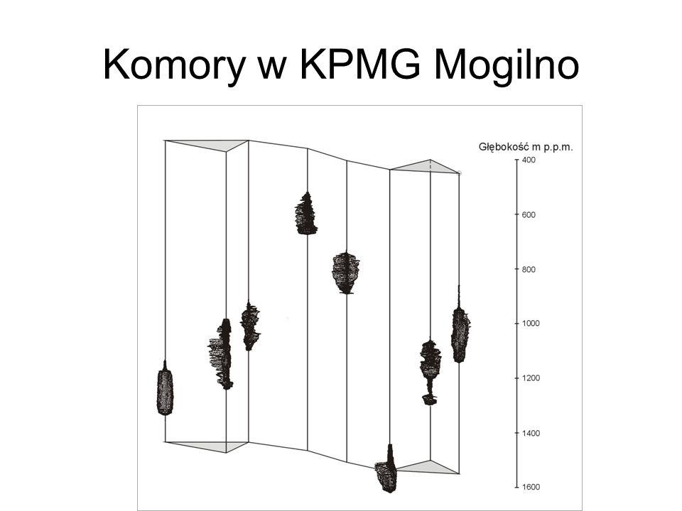 Komory w KPMG Mogilno