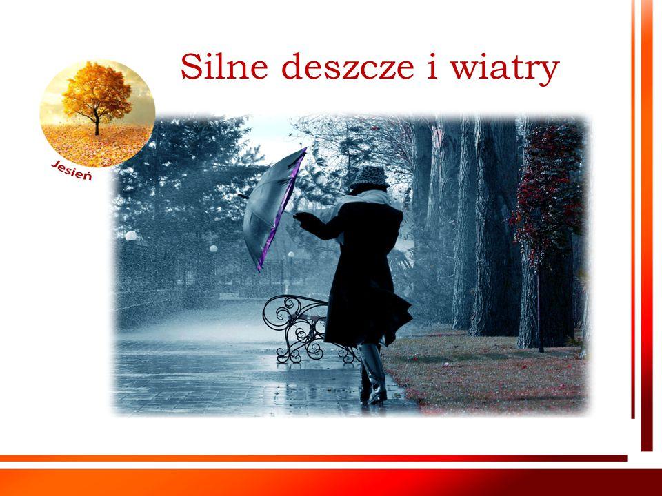 Silne deszcze i wiatry