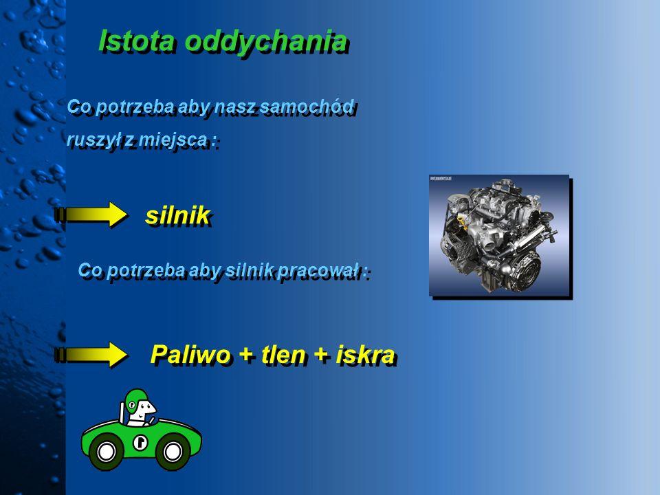 Istota oddychania silnik Paliwo + tlen + iskra