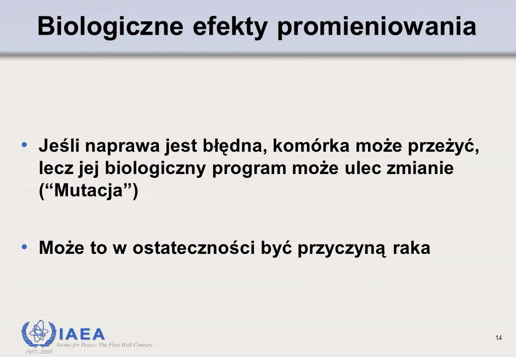 Biologiczne efekty promieniowania