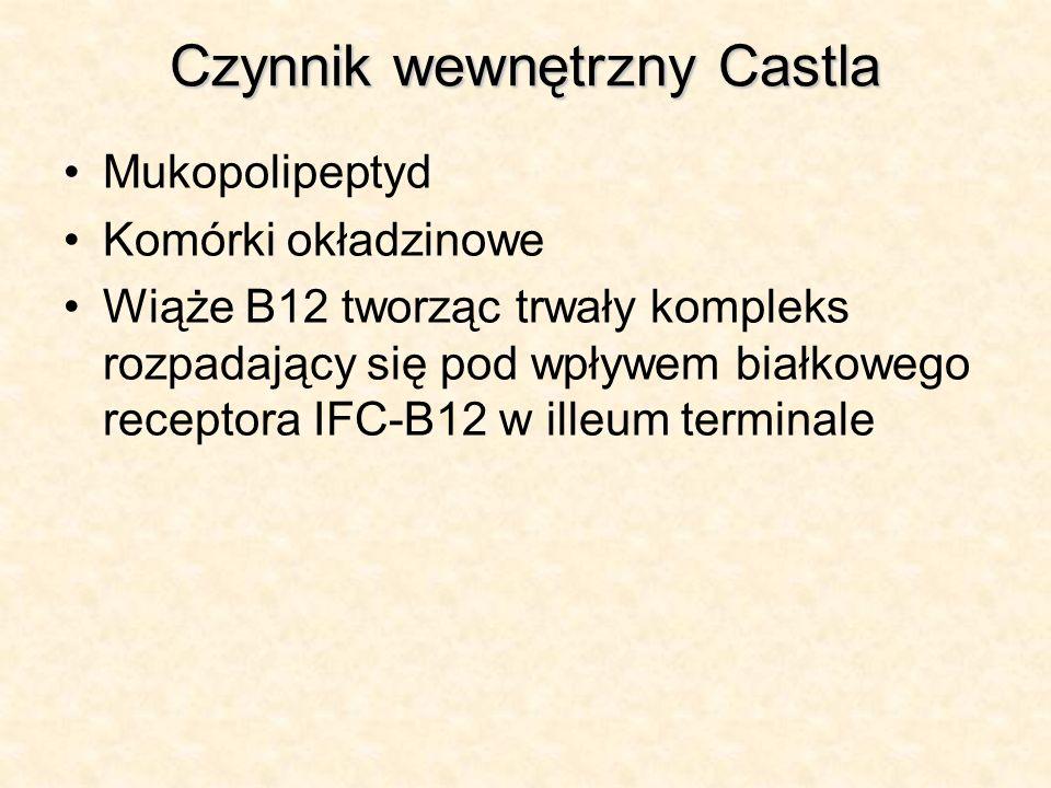 Czynnik wewnętrzny Castla