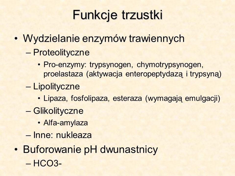 Funkcje trzustki Wydzielanie enzymów trawiennych