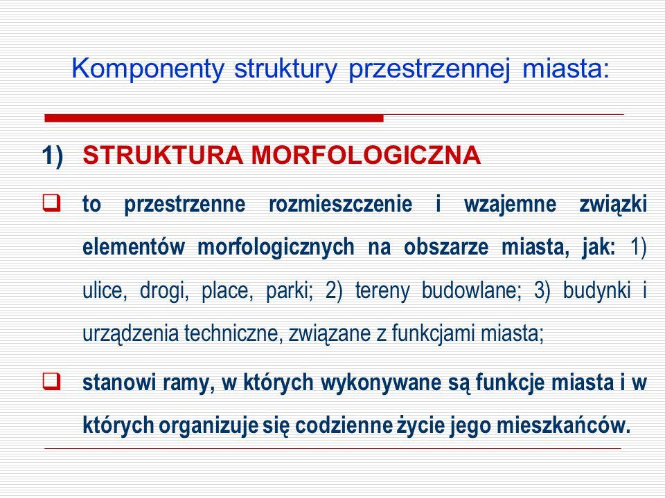 Komponenty struktury przestrzennej miasta: