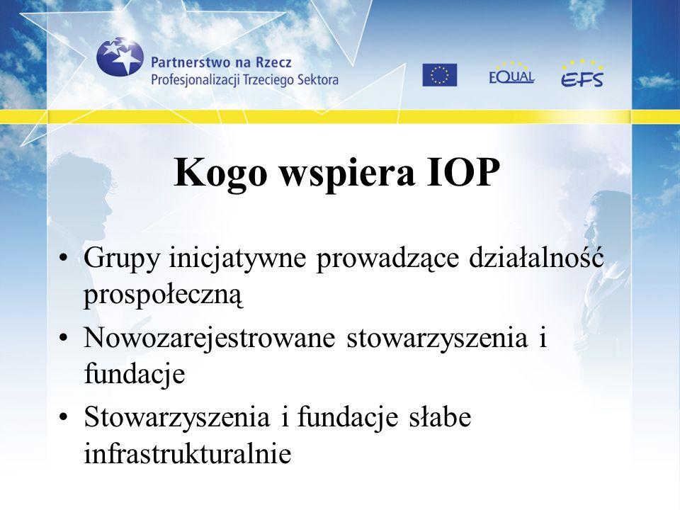Kogo wspiera IOP Grupy inicjatywne prowadzące działalność prospołeczną