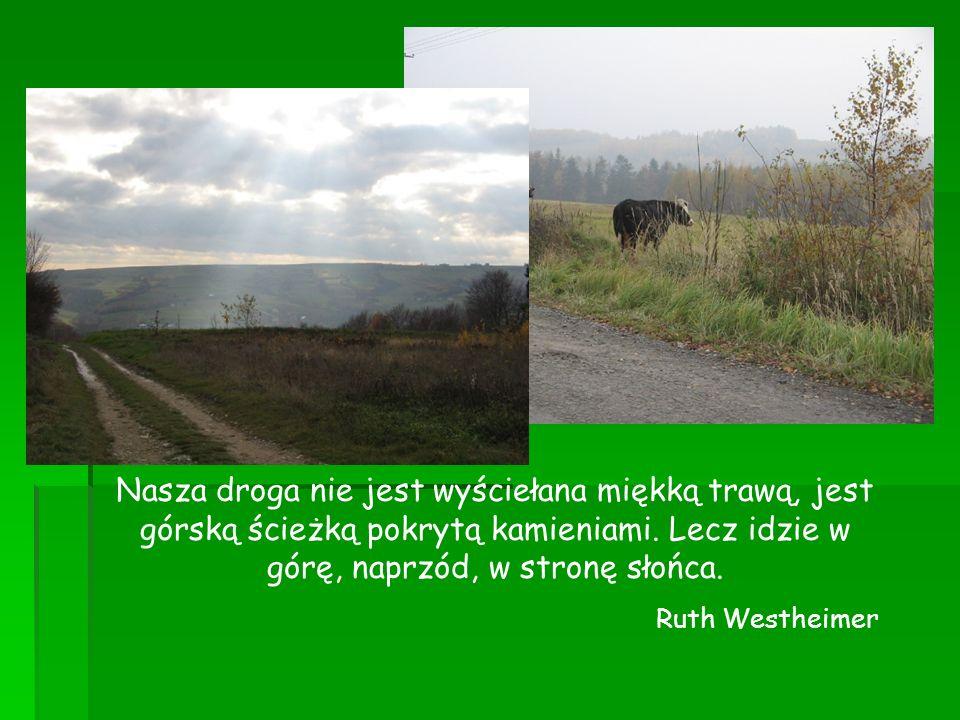 Nasza droga nie jest wyściełana miękką trawą, jest górską ścieżką pokrytą kamieniami. Lecz idzie w górę, naprzód, w stronę słońca.