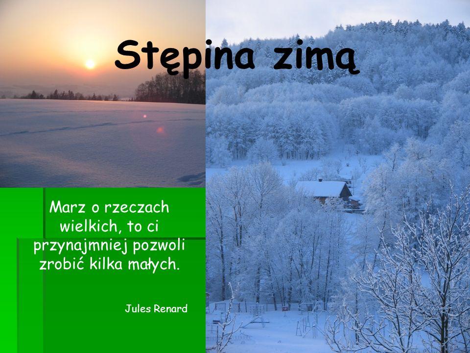 Stępina zimą Marz o rzeczach wielkich, to ci przynajmniej pozwoli zrobić kilka małych.