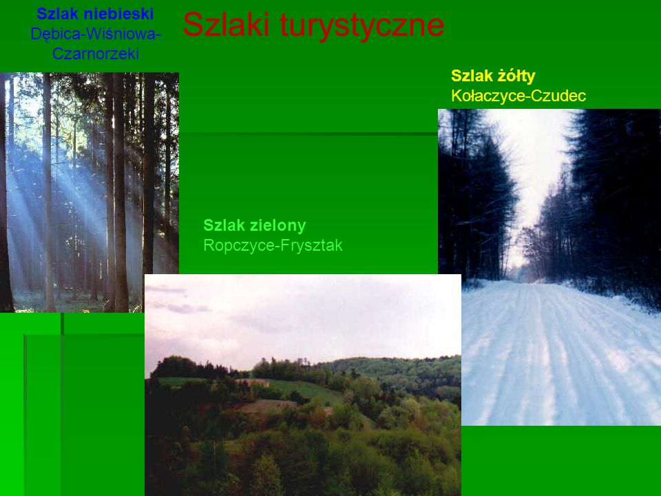 Szlak niebieski Dębica-Wiśniowa-Czarnorzeki