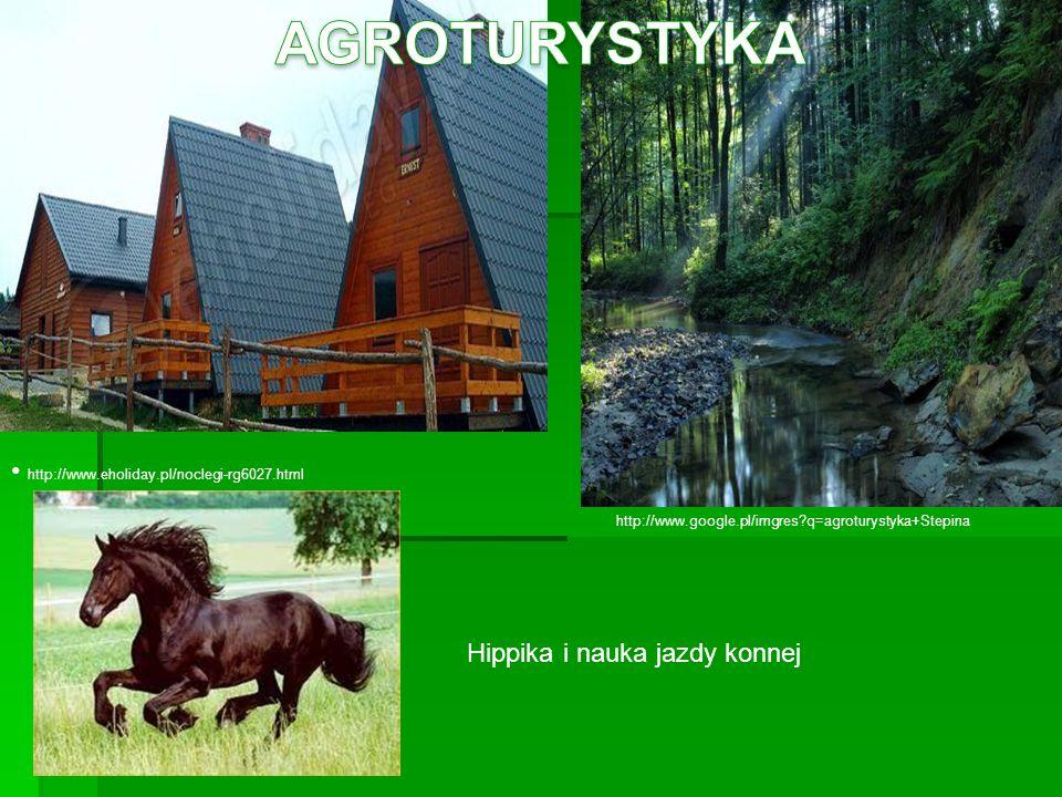AGROTURYSTYKA http://www.eholiday.pl/noclegi-rg6027.html