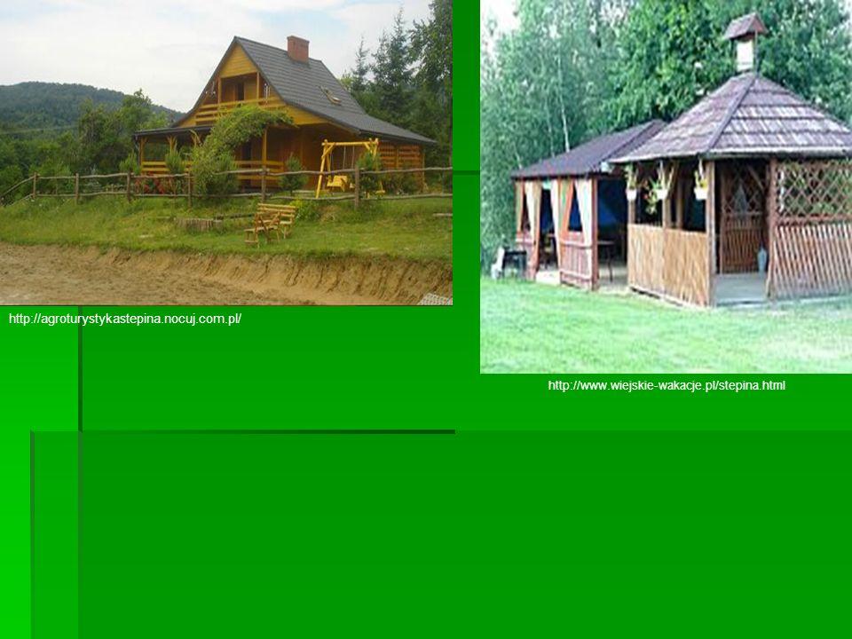 http://agroturystykastepina.nocuj.com.pl/ http://www.wiejskie-wakacje.pl/stepina.html