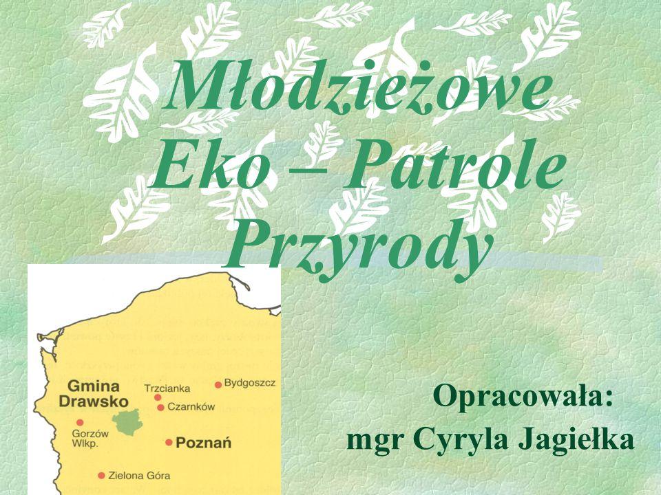 Młodzieżowe Eko – Patrole Przyrody Opracowała: mgr Cyryla Jagiełka