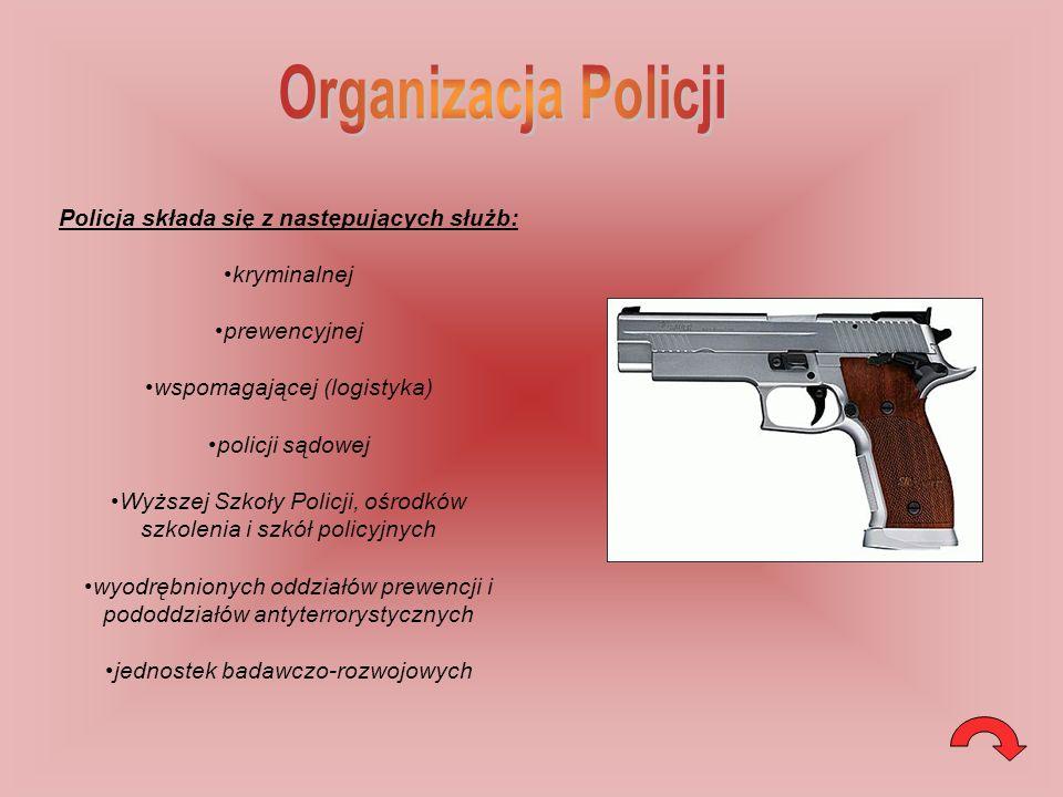 Policja składa się z następujących służb:
