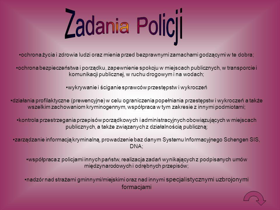 wykrywanie i ściganie sprawców przestępstw i wykroczeń