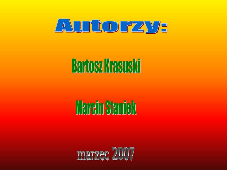 Autorzy: Bartosz Krasuski Marcin Staniek marzec 2007
