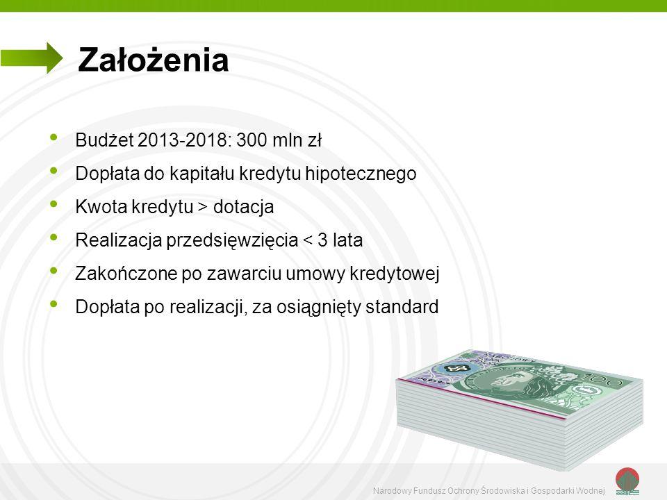 Założenia Budżet 2013-2018: 300 mln zł