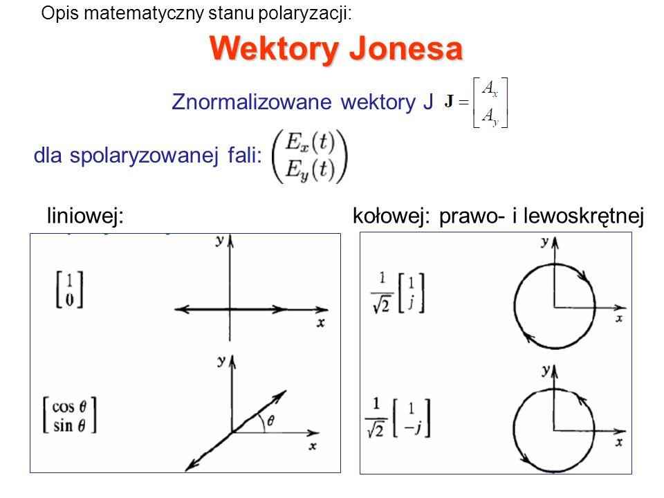 Znormalizowane wektory Jonesa