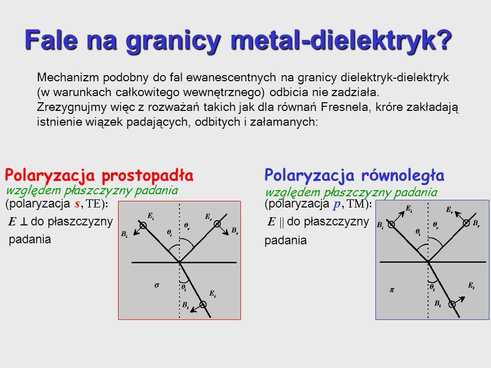 Fale na granicy metal-dielektryk