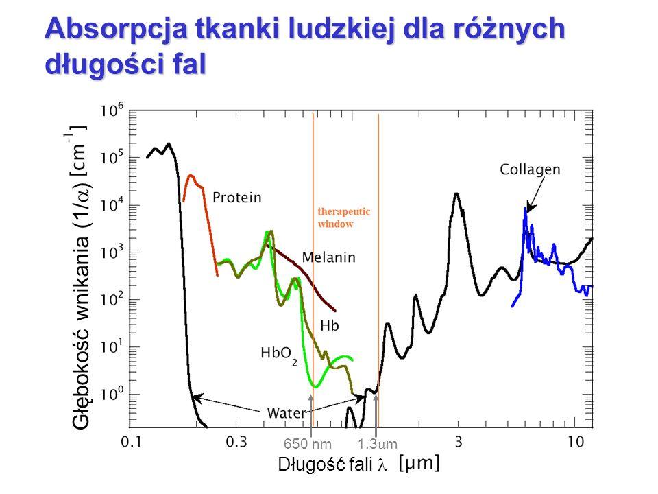 Absorpcja tkanki ludzkiej dla różnych długości fal