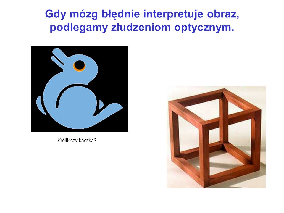 Gdy mózg błędnie interpretuje obraz, podlegamy złudzeniom optycznym.
