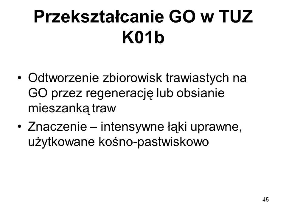 Przekształcanie GO w TUZ K01b