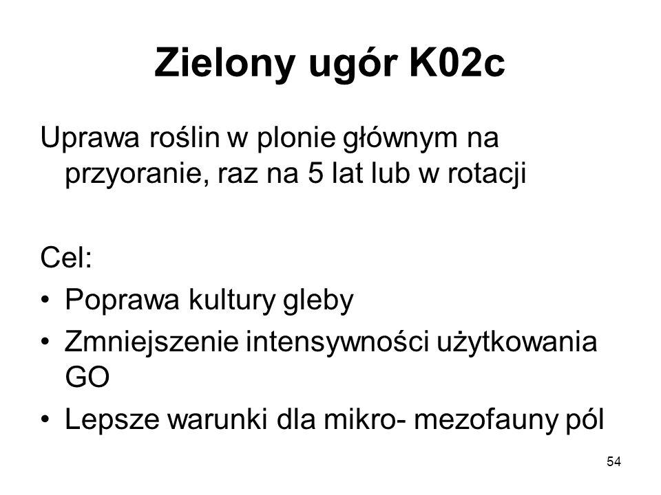 Zielony ugór K02c Uprawa roślin w plonie głównym na przyoranie, raz na 5 lat lub w rotacji. Cel: Poprawa kultury gleby.