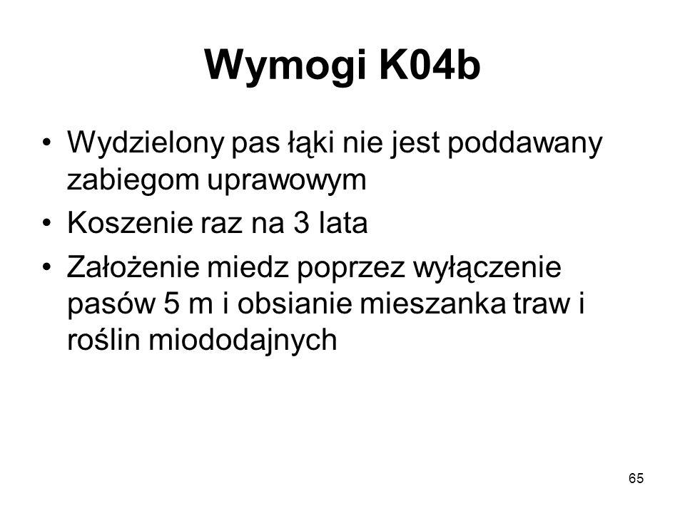 Wymogi K04b Wydzielony pas łąki nie jest poddawany zabiegom uprawowym