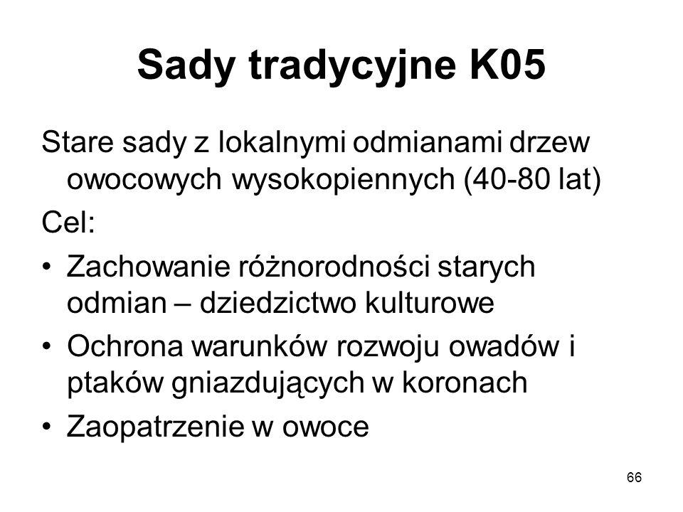 Sady tradycyjne K05 Stare sady z lokalnymi odmianami drzew owocowych wysokopiennych (40-80 lat) Cel: