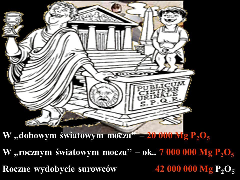 """W """"dobowym światowym moczu – 20 000 Mg P2O5"""