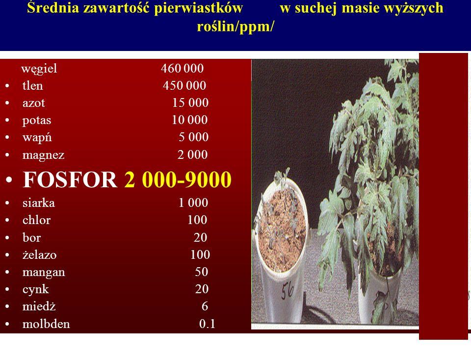 Średnia zawartość pierwiastków w suchej masie wyższych roślin/ppm/