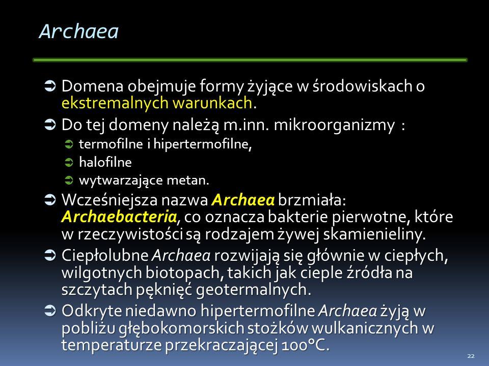 Archaea Domena obejmuje formy żyjące w środowiskach o ekstremalnych warunkach. Do tej domeny należą m.inn. mikroorganizmy :