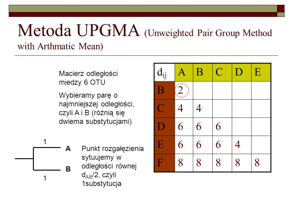 Metoda UPGMA (Unweighted Pair Group Method with Arthmatic Mean)
