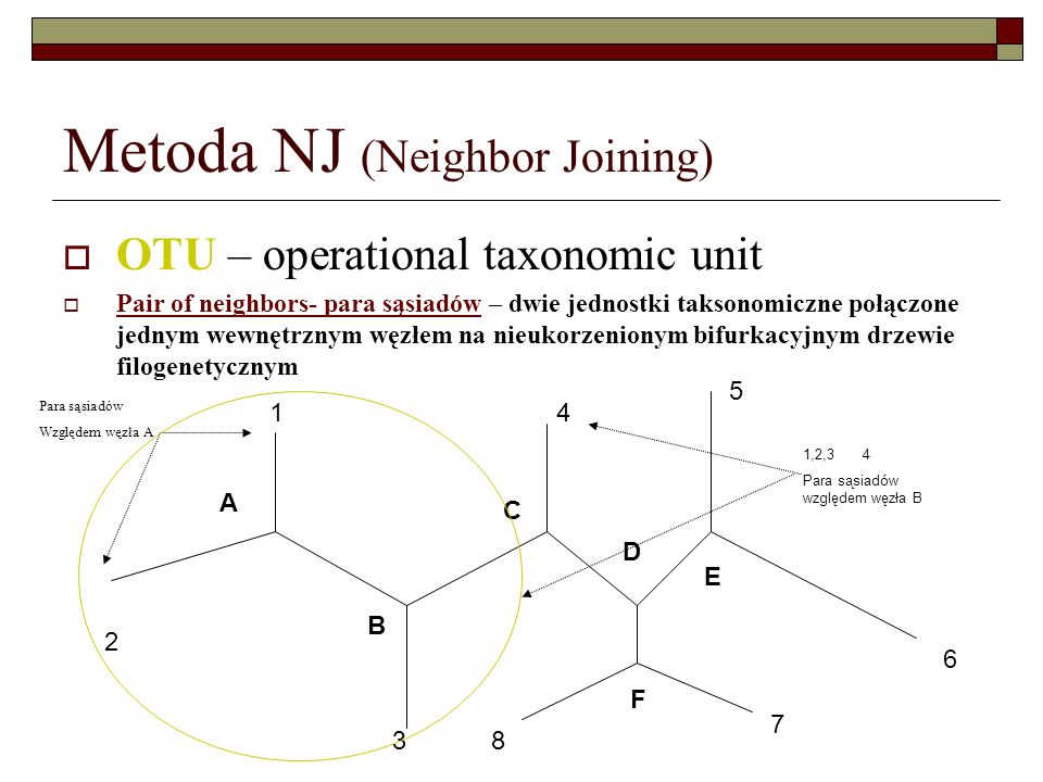 Metoda NJ (Neighbor Joining)