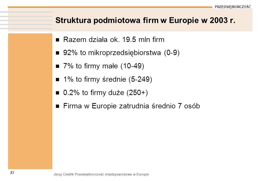 Struktura podmiotowa firm w Europie w 2003 r.