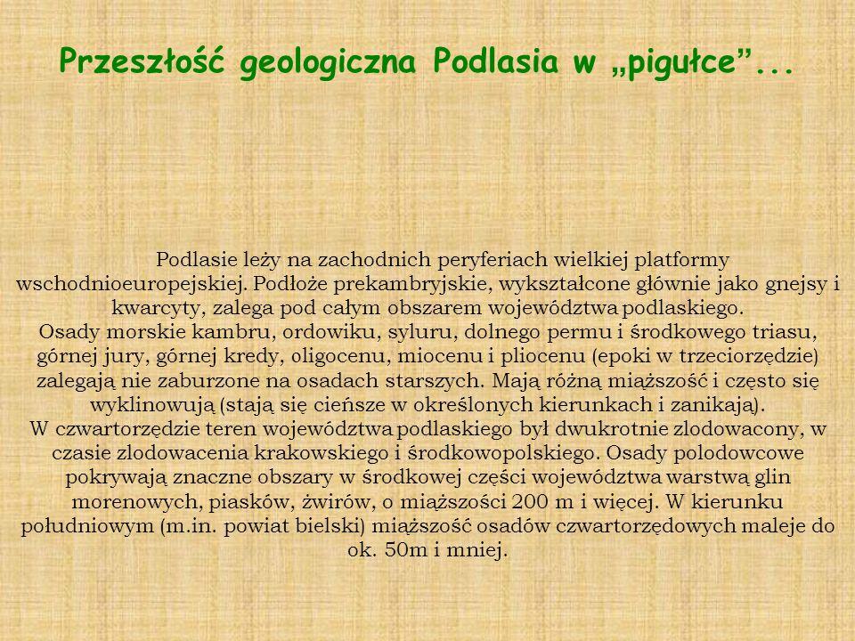 """Przeszłość geologiczna Podlasia w """"pigułce ..."""