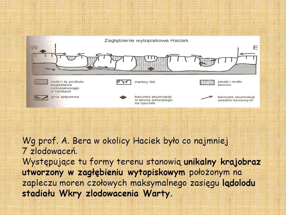 Wg prof. A. Bera w okolicy Haciek było co najmniej